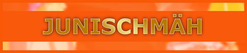 blog_junischm_schmal